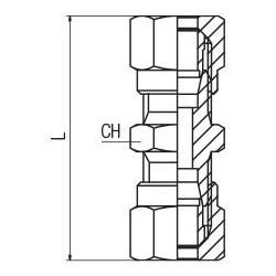 EMBUDO porcelana Buchner diametro Ø77mm 35mm